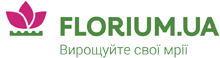 Cashback in Florium UA in France