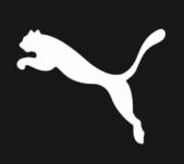 Puma IT