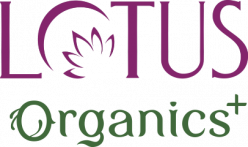 Cashback in Lotus Organics in India